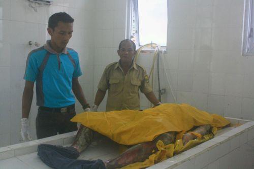 Mayat yang belum diketahui identitasnya berada di Kamar jenaszah RSUD Palabuhanratu