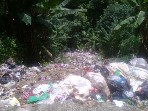 Hutan lindung Cisarakan desa Buniwangi kec. Palabuhanratu sedalam 100 meter menjadi tempat pembuangan sampah (Photo : Palabuhanratu Online)