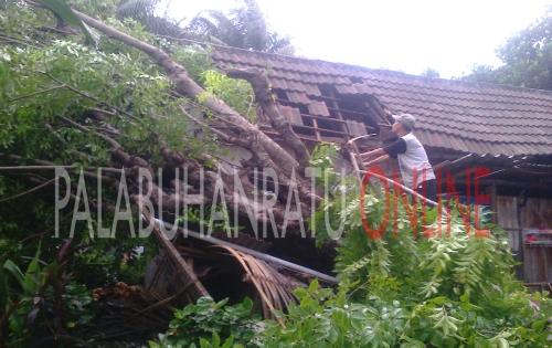 Rumah milik Dasep (50) warga Perum BTN Kp. Cipatuguran RT.01 RW.33 yang tertimpa pohon akibat angin puting beliung (Photo : Palabuhanratu Online)